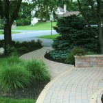 Walkway built around trees with retaining wall
